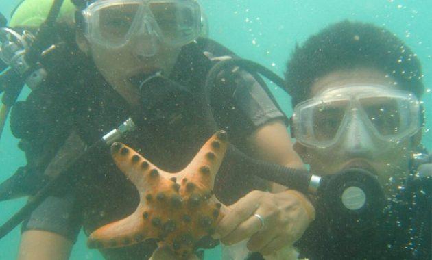 Menikmati Diving Di Tanjung Benoa